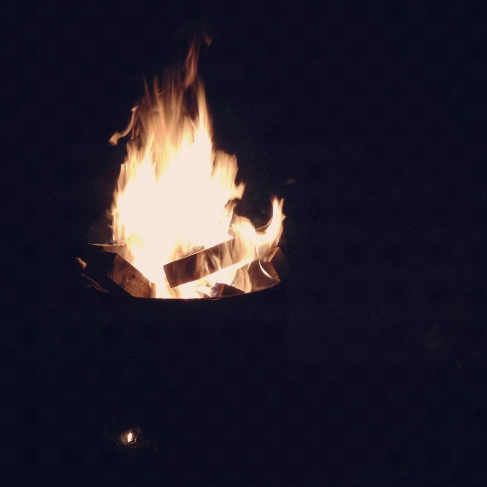 advice for the bachelor. bonfire