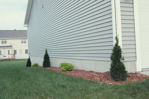 Landscaping left side of house