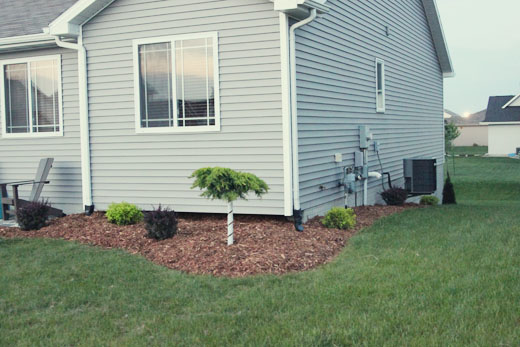 Landscaping right side of house