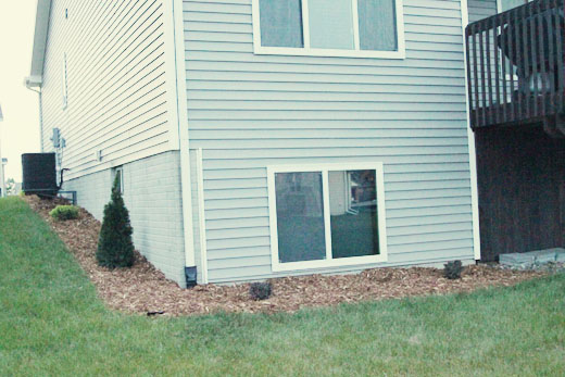 Landscaping Back of house