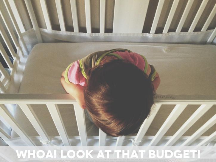 Toddler Budget