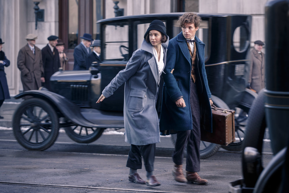 Katherine Waterston and Eddie Redmayne star in  Fantastic Beasts and Where To Find Them