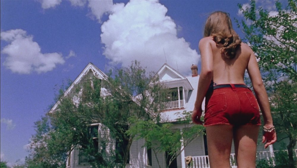 7. The Texas Chain Saw Massacre