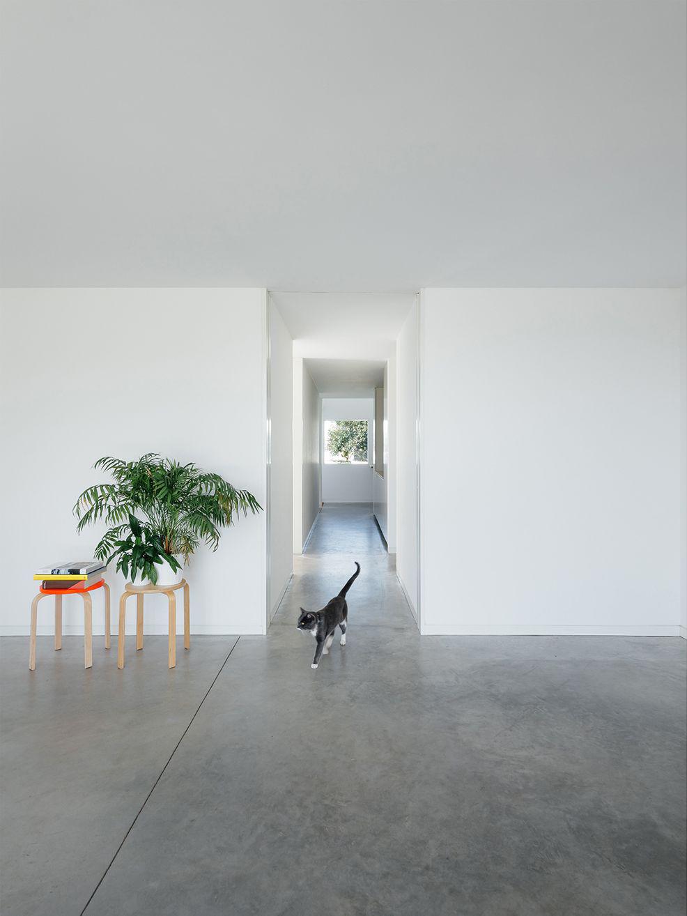 casa-preguicosas-16