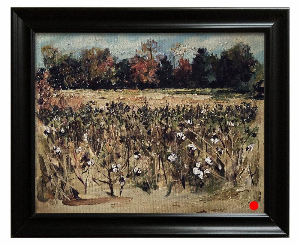 Cotton field study 1