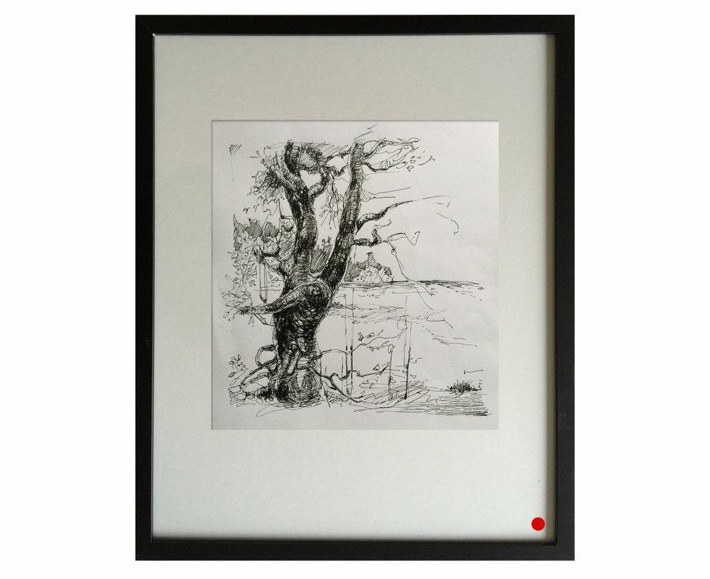 Tree study 3
