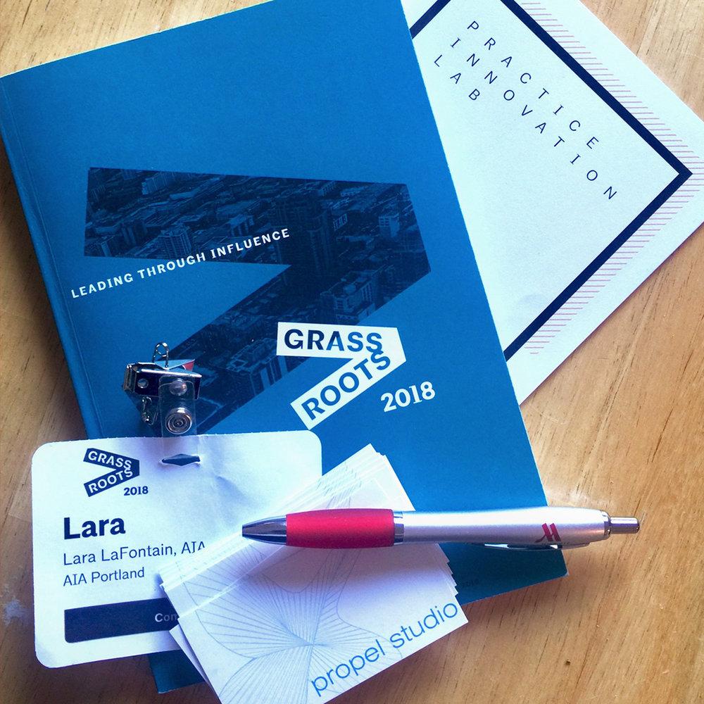 AIA Grassroots 2018.jpg