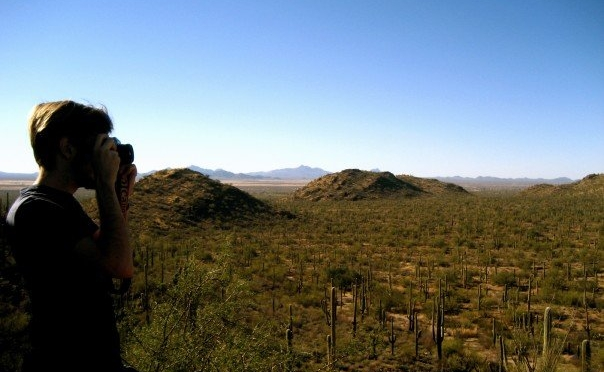 A desert vista in Saguaro National Park