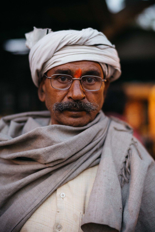 Monkey, jaipur-7.jpg