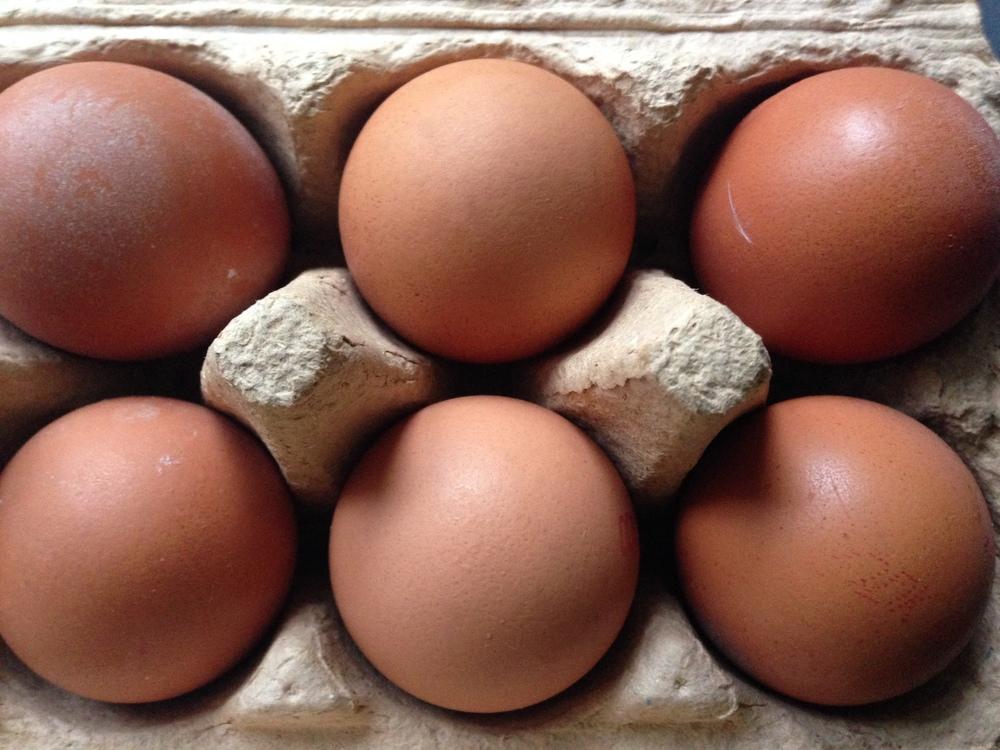 Fat + Cholesterol myths debunked
