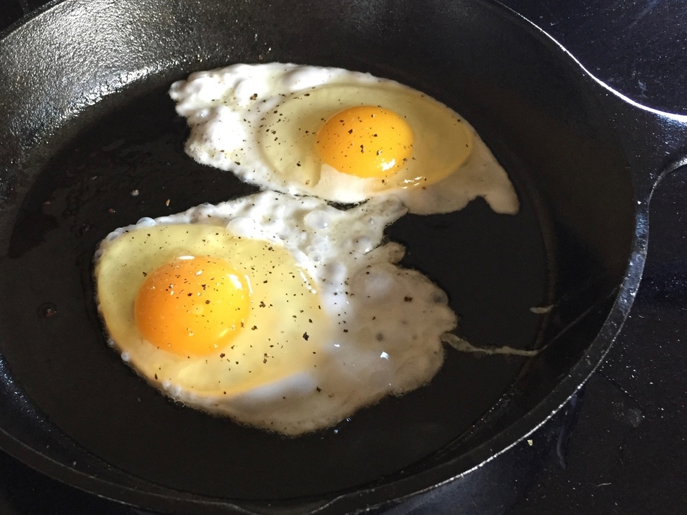 Huge orange yolks