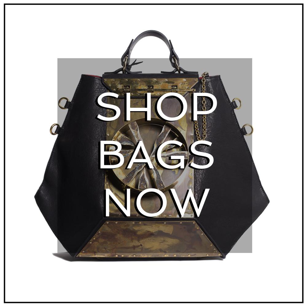 shopBAGSnow1.jpg