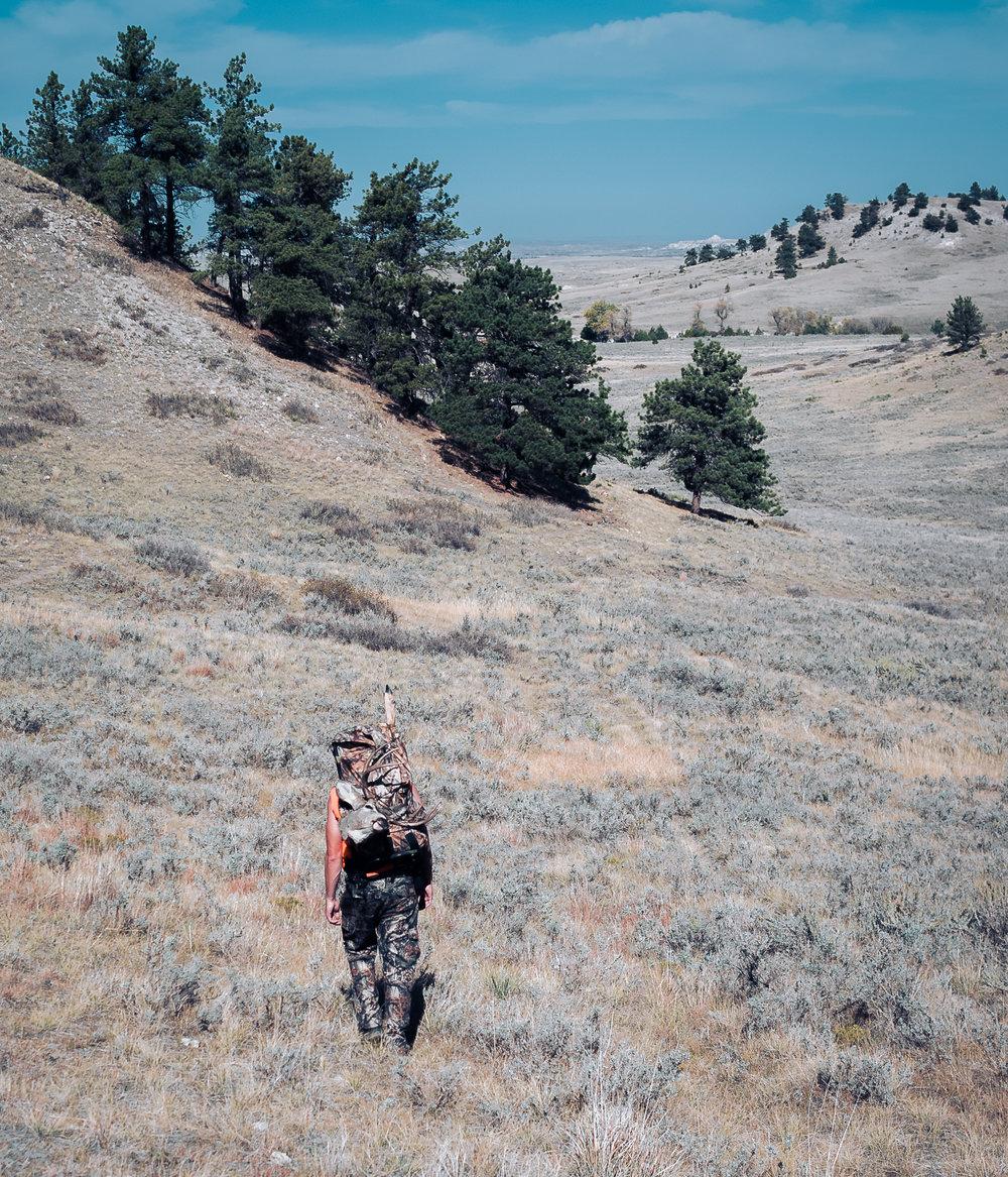 _0012955_WyomingII.jpg