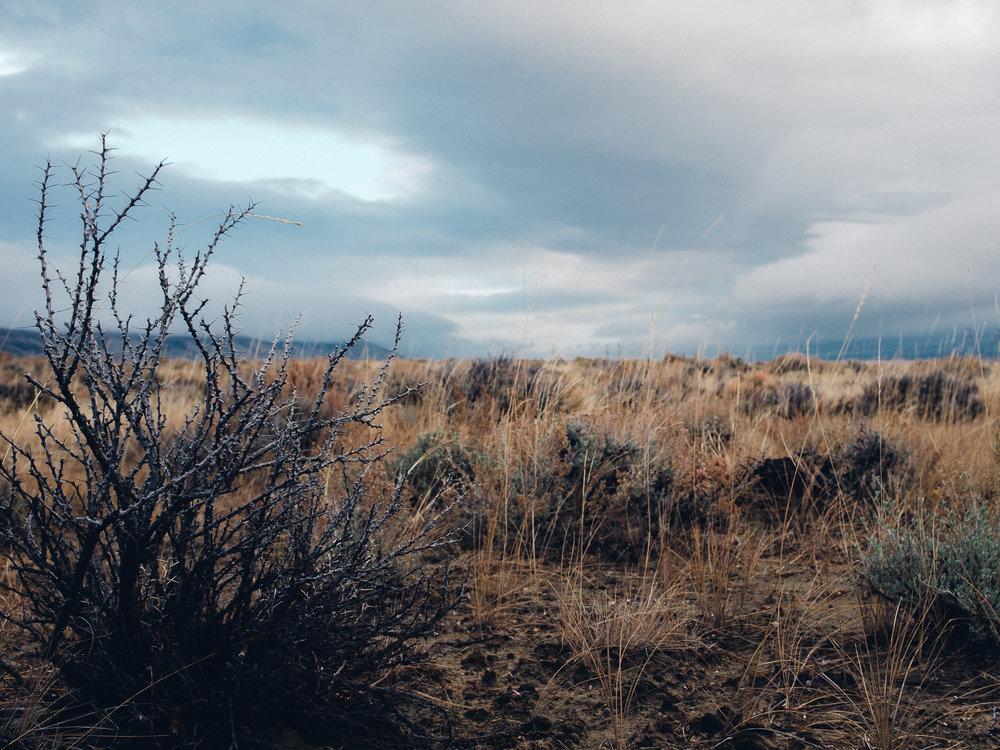 _DSF2076_Colorado-2.jpg
