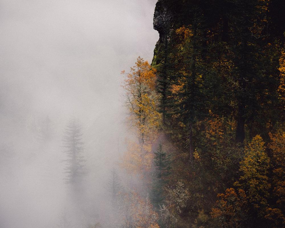 Autumn, Columbia River Gorge