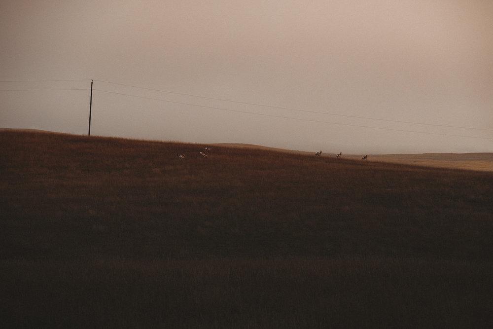 DSCF5873_Wyoming.jpg