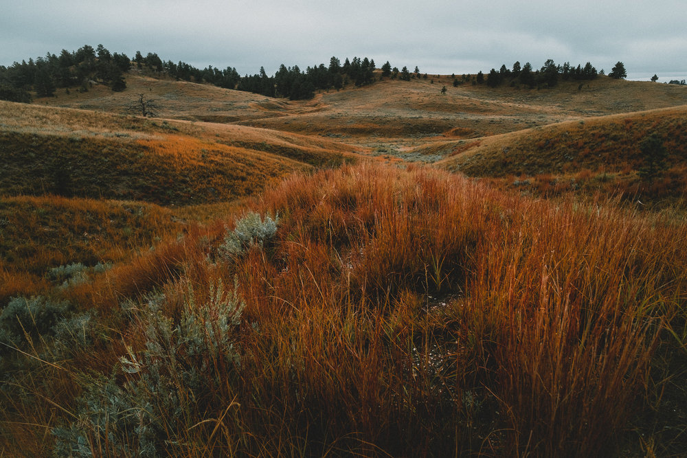 _ROB2591_Wyoming.jpg