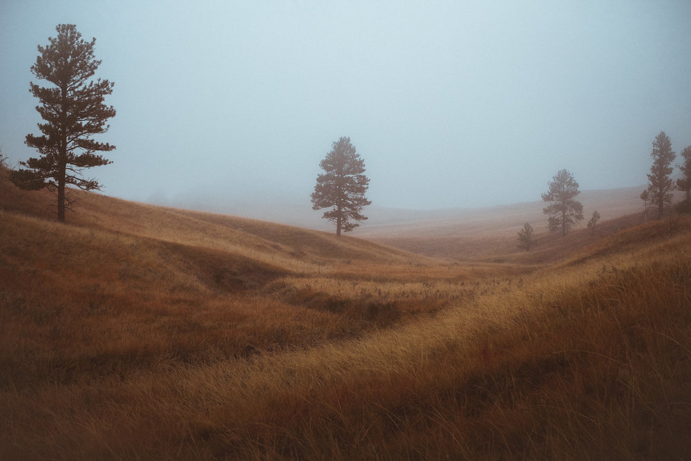 foggy wyoming I