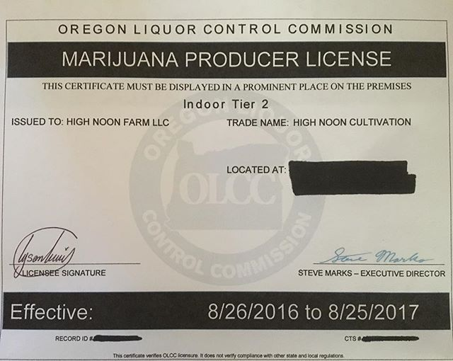 Feeling good about this today🙏. #highnoon #getready  #cannabisfarmer #ommp #portland #booyah #unlimitednumers #seeds #for #days #cannabis #pinchme