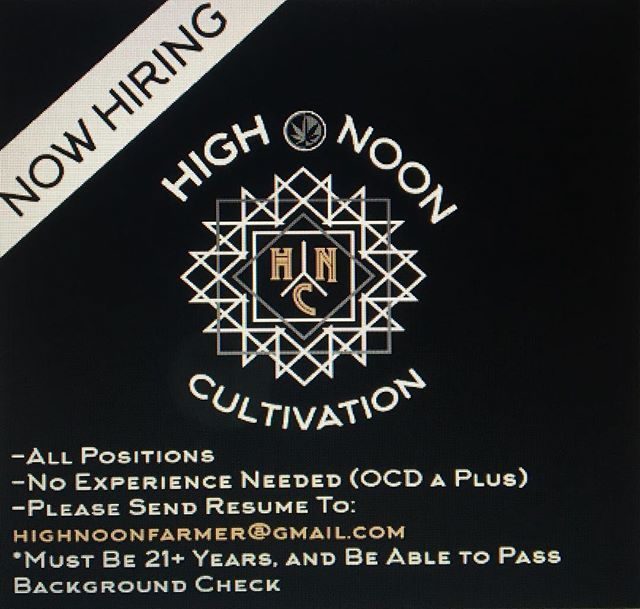 Our team is growing! Looking for a few reliable kick ass people. Must be willing to learn, work hard💪and be super positive👍. We are located out in Molalla, so reliable transportation is a must. Looking to fill full/part time trimming, gardening, and regulatory specialist positions (all days). Holding interviews over the next few weeks. Look forward to hearing from you!  #highnoon #plantbasedhorticulture #ommp #olcc #portland #cannabis #hiring #farmlife #hightimes #oregon #jobs #awesome #people #terps #trichomes #weed #molalla #Clackamascounty #dope #i502