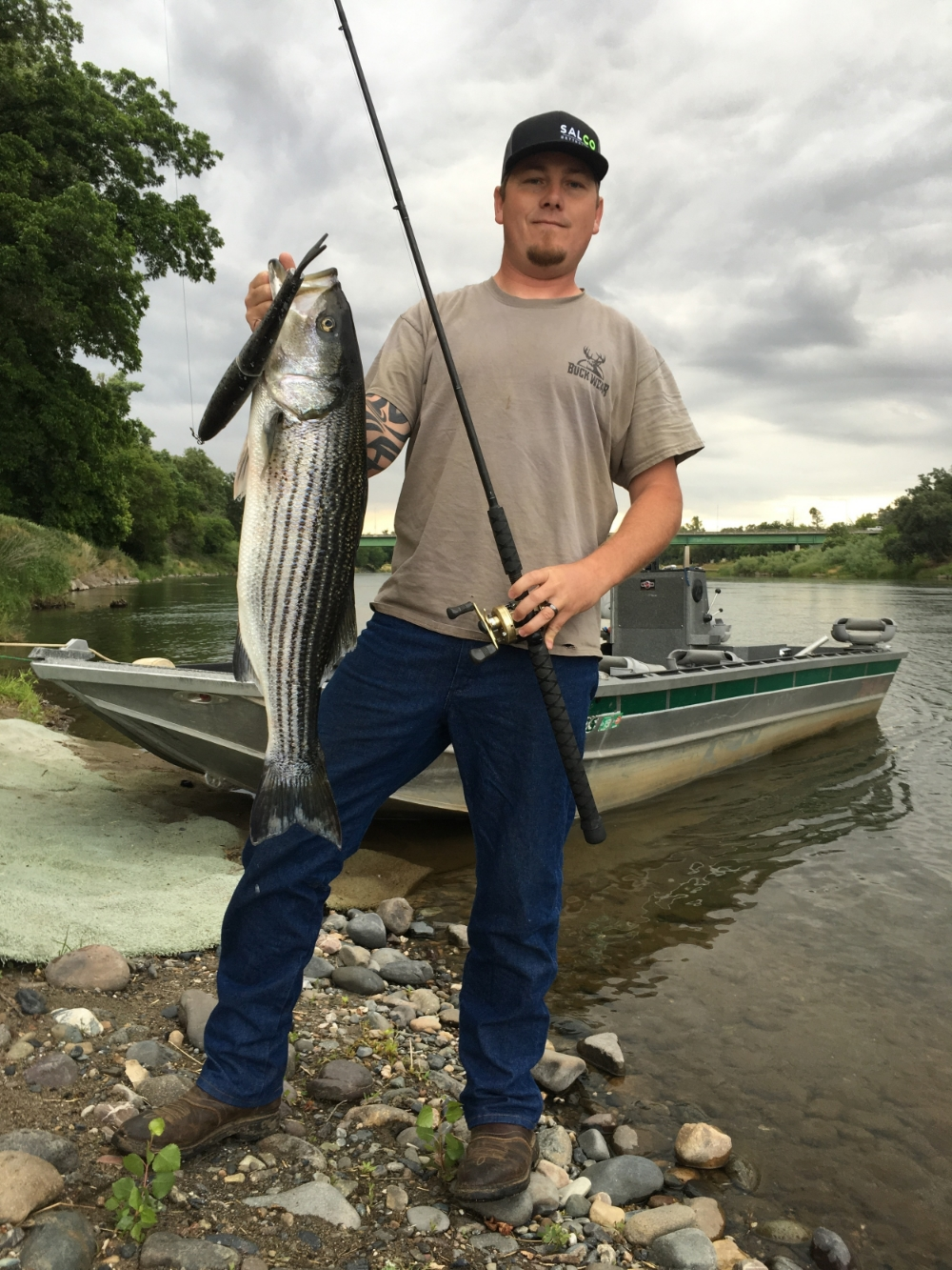 Michael Armstrong from Nice, Ca caught this 14 pound striped bass on May 23, 2016. He was casting a custom made 15 inch glide bait, in a rainbow trout pattern.