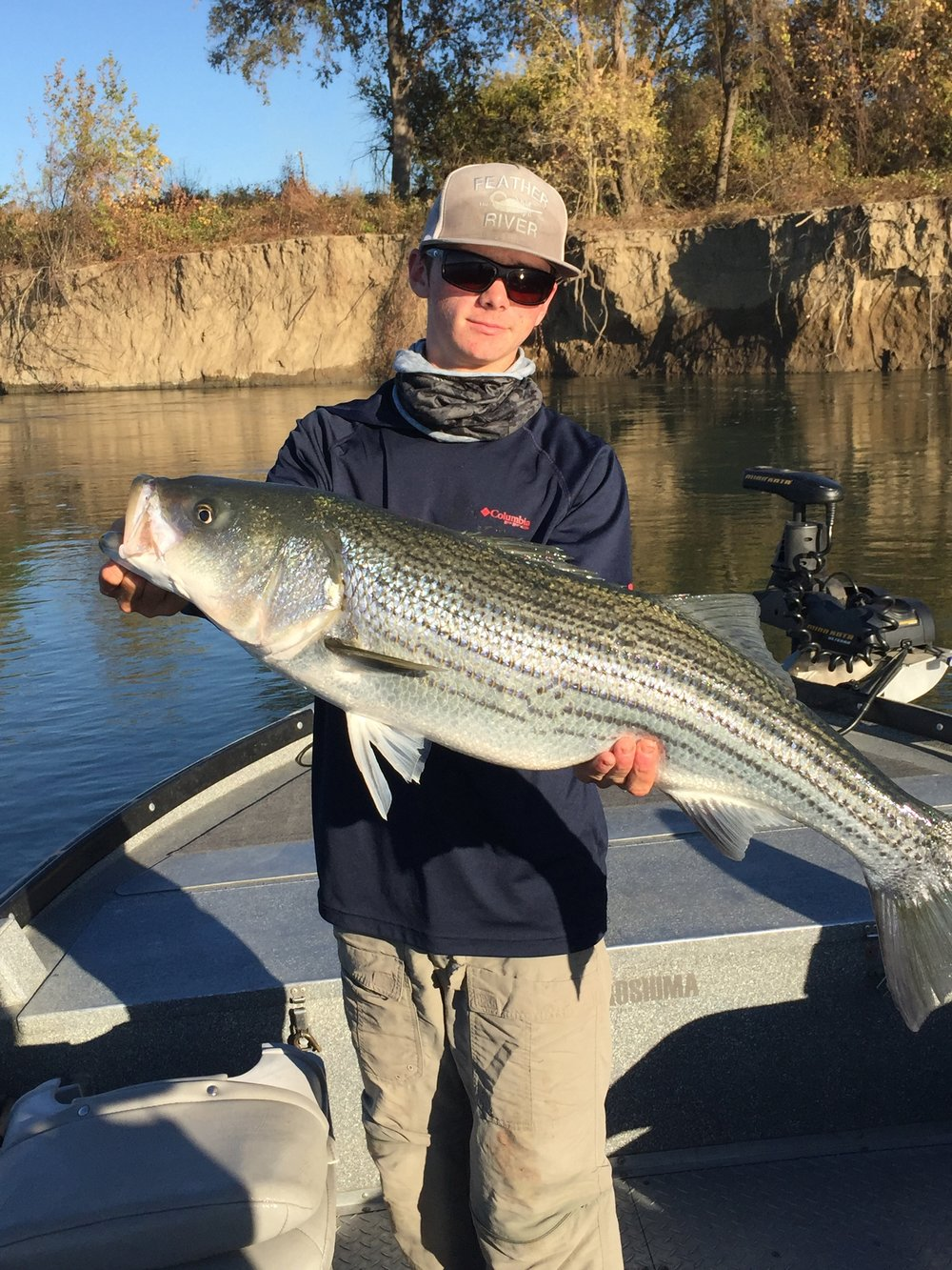 This striped bass held by Ryan Tripp is the small half of a modest 58# pound limit caught with Billy Driessen of Driessen's Guide Service on the Sacramento River earlier this week.