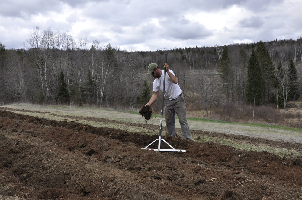 Good soil is where all farming efforts begin. Plowed, raked and amended as necessary, Matt finishes the soil preparation before the roots of new apple trees are set.
