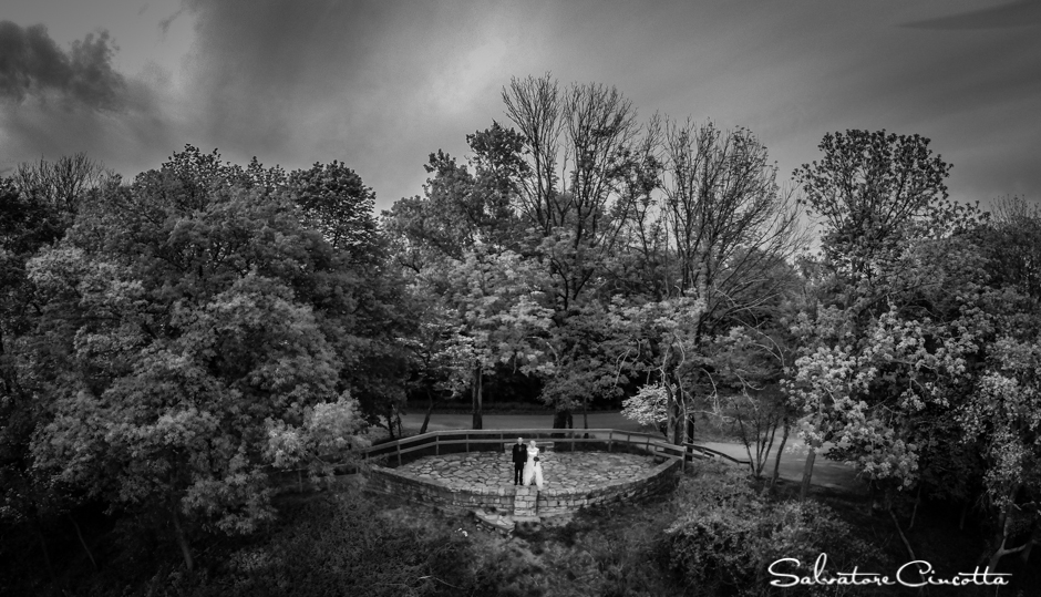 wpid4588-st_louis_wedding_photographer_014.jpg