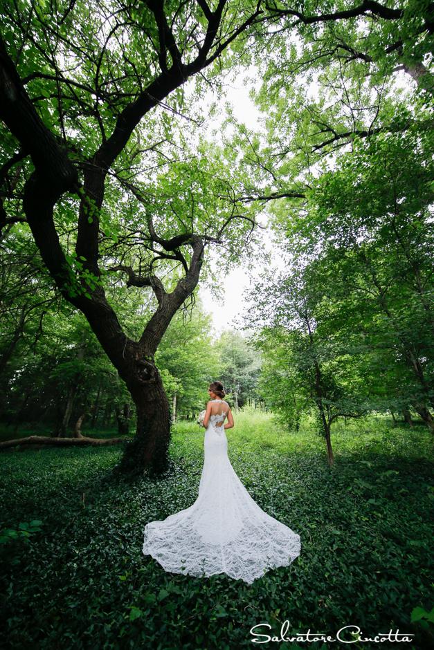 wpid4738-st_louis_wedding_photographer_009.jpg