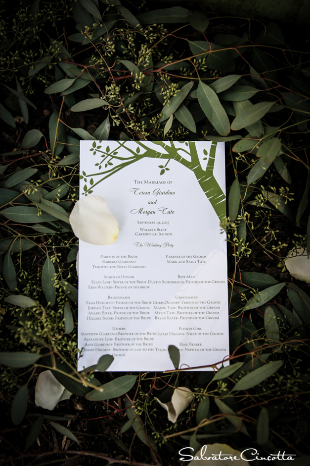 wpid4974-st_louis_wedding_photographer_012.jpg