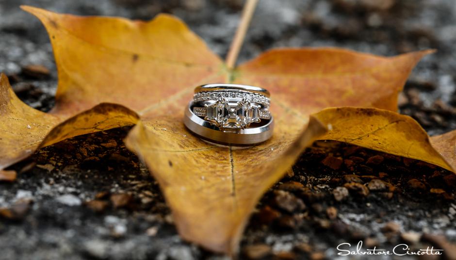 wpid5010-st_louis_wedding_photographer_014.jpg