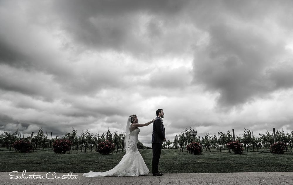 stlouis_wedding_photography_thomas__1D18354.jpg