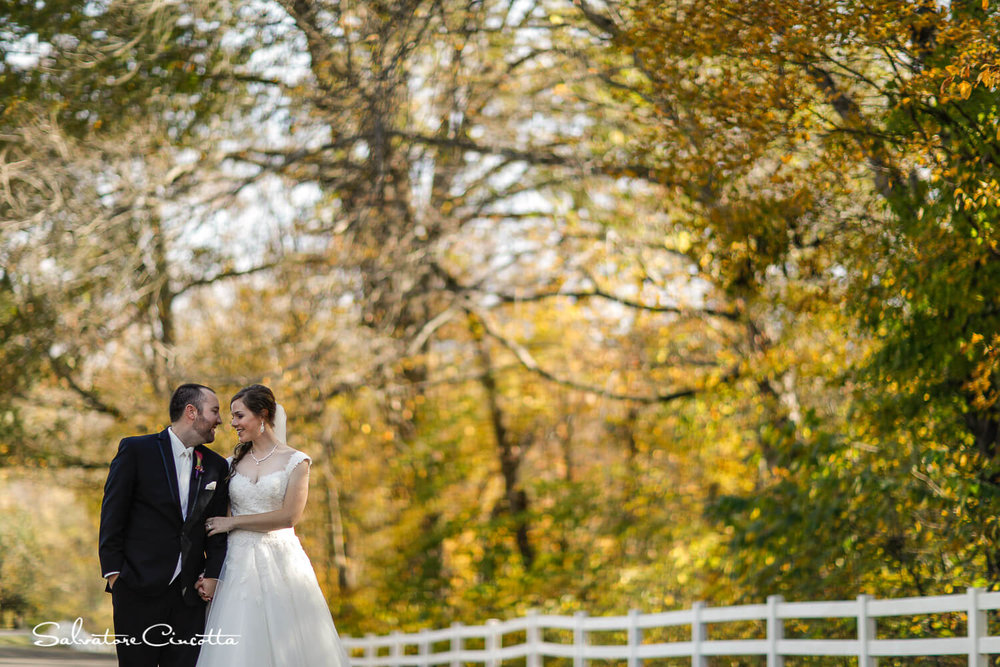 stlouis_wedding_photography__AZ11757.jpg