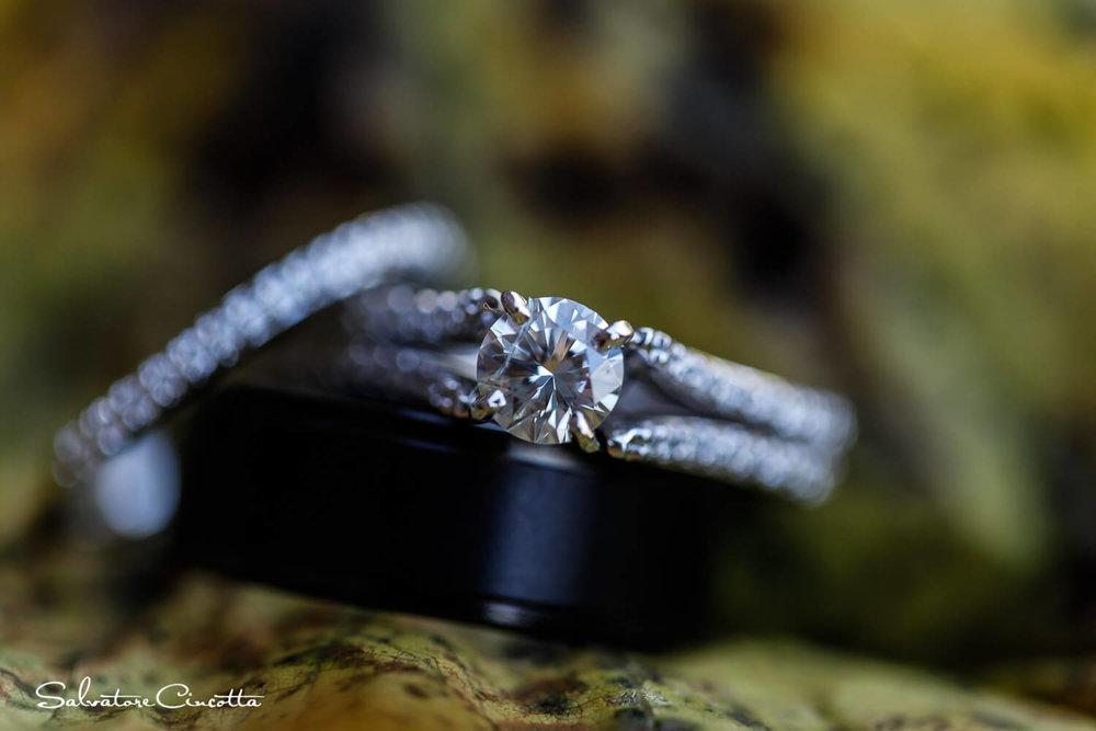 stlouis_wedding_photography__SC15415.jpg