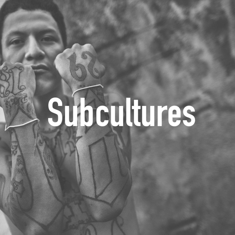 sub cultures.jpg