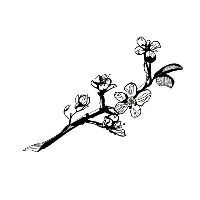 ° available ° Back to the work week 👉 here's some little branch and flower flash hitting your way Done @inkandwatertattoo ° ° Booking in October! Hit me up with your flash and custom pieces 💓🤓 ° ° °  #tattoo #tattoodrawing #ink #art #visualart #blackworkers #blackwork #torontotattoo #tattooflash #flash #illustration #drawing #inkandwatertattoo #torontoartist #torontoink #toronto #artofinstagram #tattoolife #apprenticelife #tattoosofinstagram #tattooapprentice #floraltattoo #floral #botanicaltattoo #flowertattoo #cherryblossomtattoo