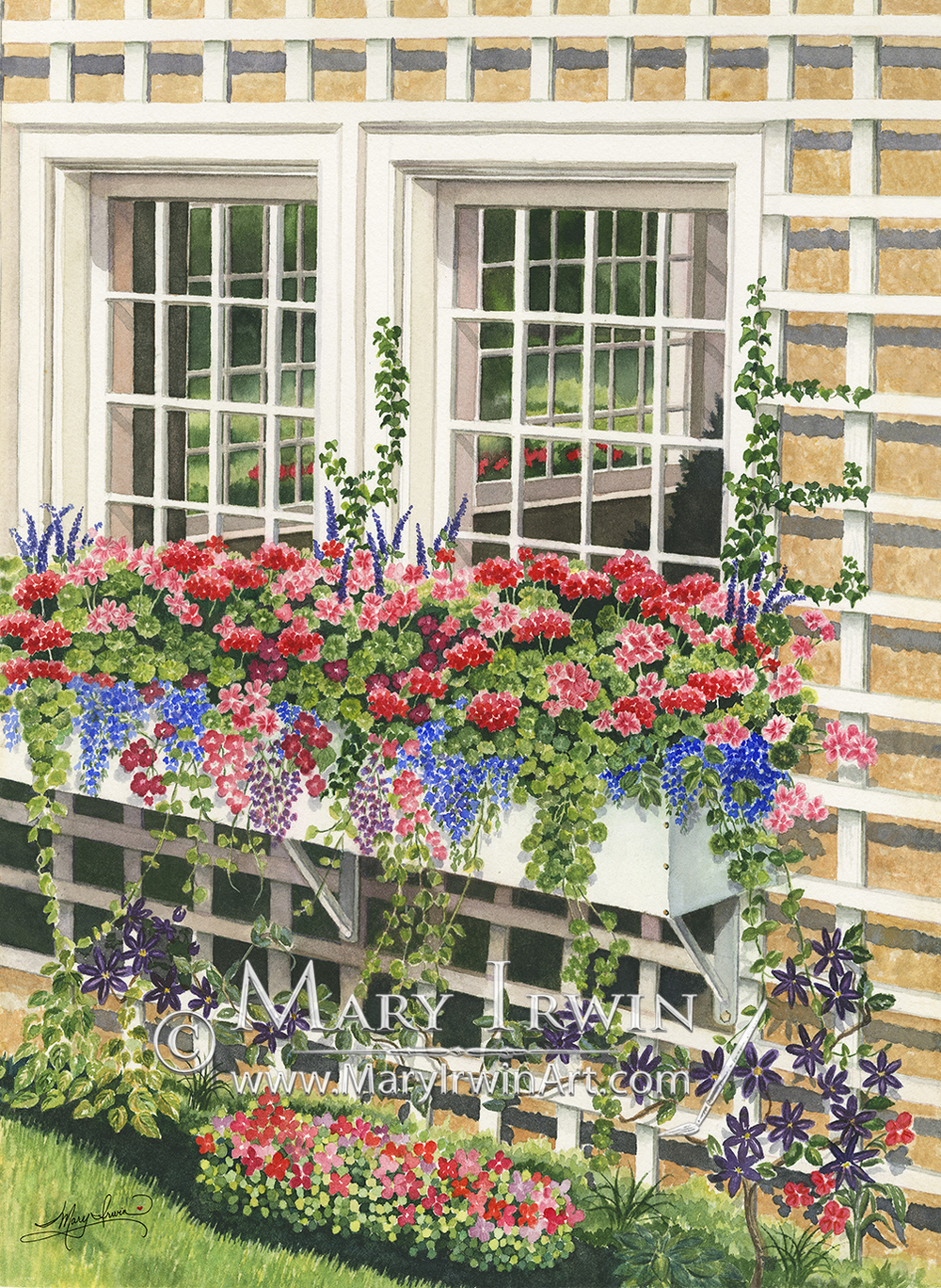 Butchart Gardens Window Box by Mary Irwin
