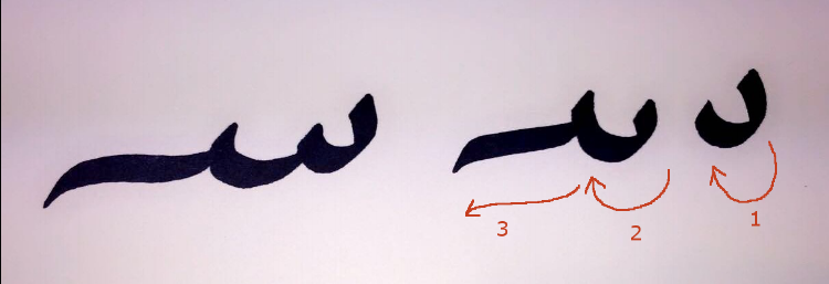 Note: The two parts that make up the seen. The second dip is usually longer than the first