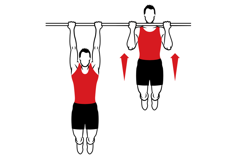 Client Inspired Chin Ups Vs Pull Ups Bayerfit