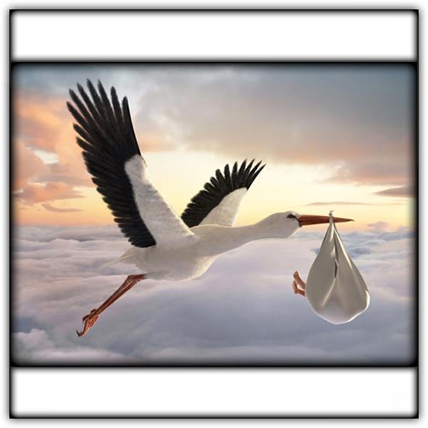 Mother's Day Stork 600.JPG