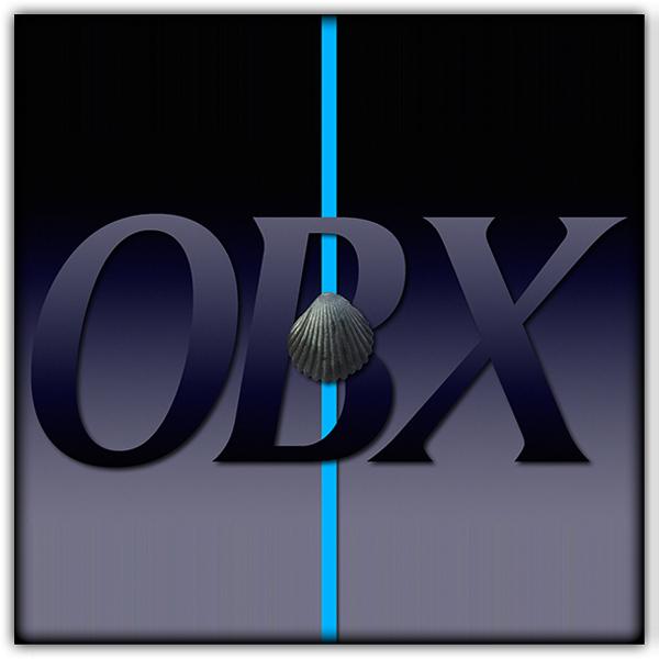 OBX600.JPG
