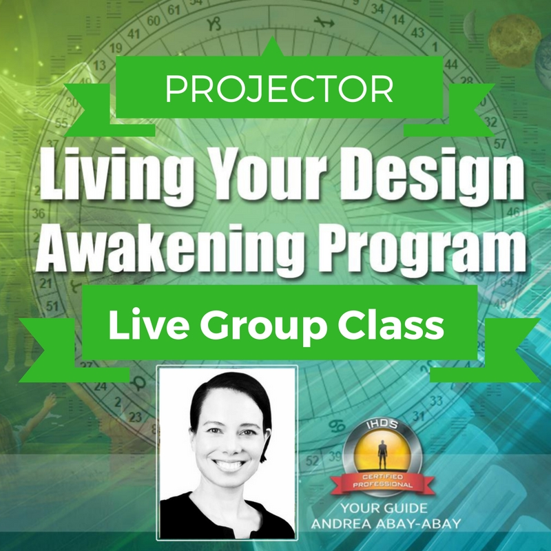 Click for more Info on the Live Group Experience for Proectors