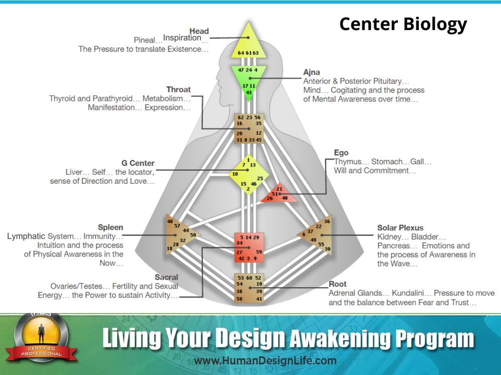 Human Design Centers