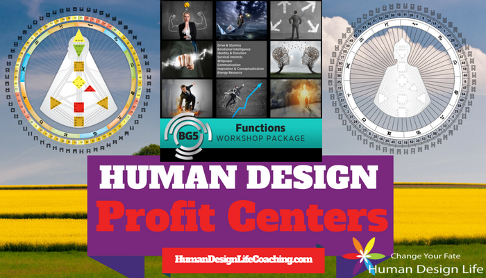 Human Design Profit Centers