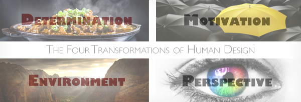 Human Design System Four Radical Transformations
