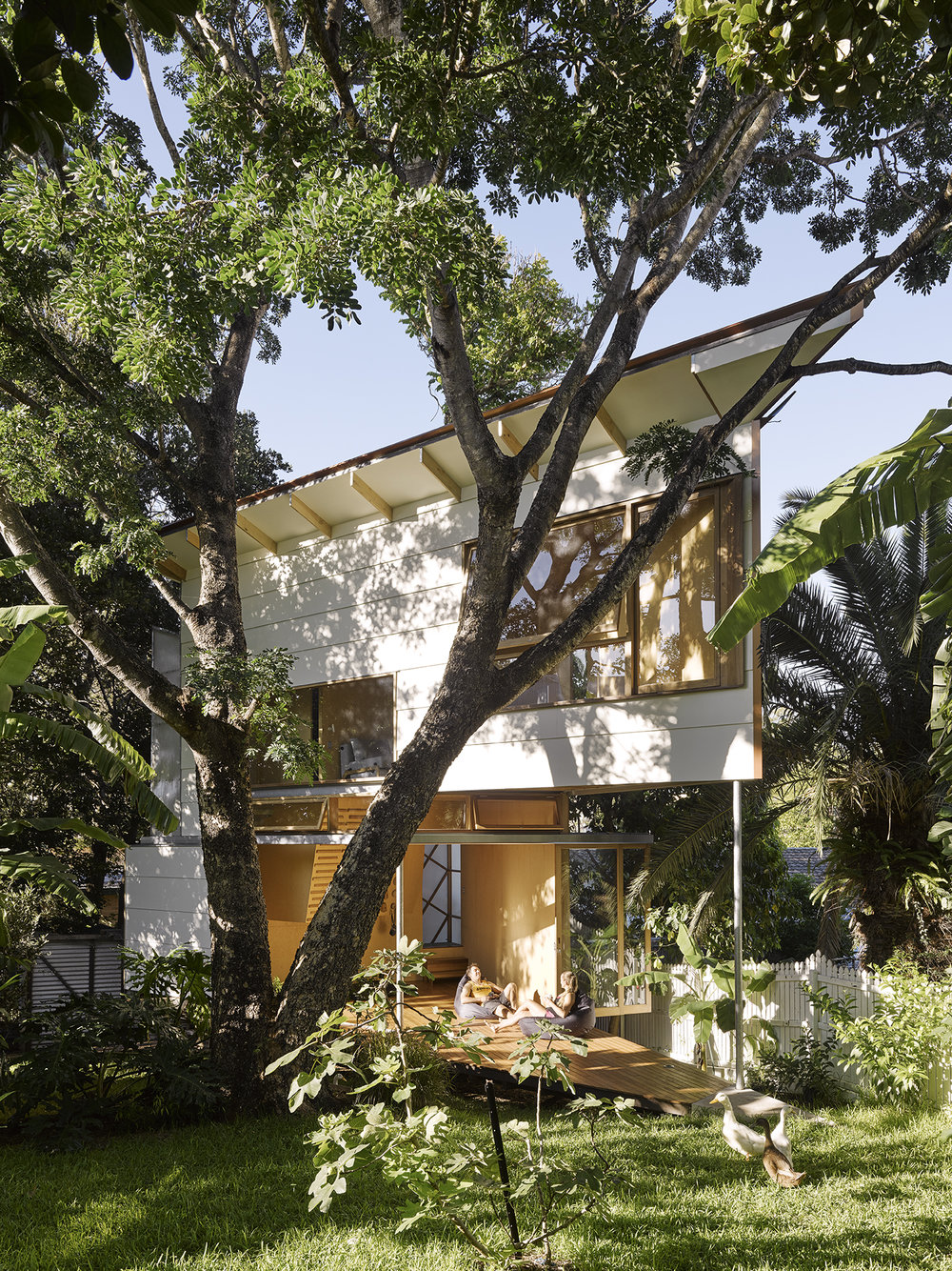 -®CFJ_Taringa Treehouse-18.jpg
