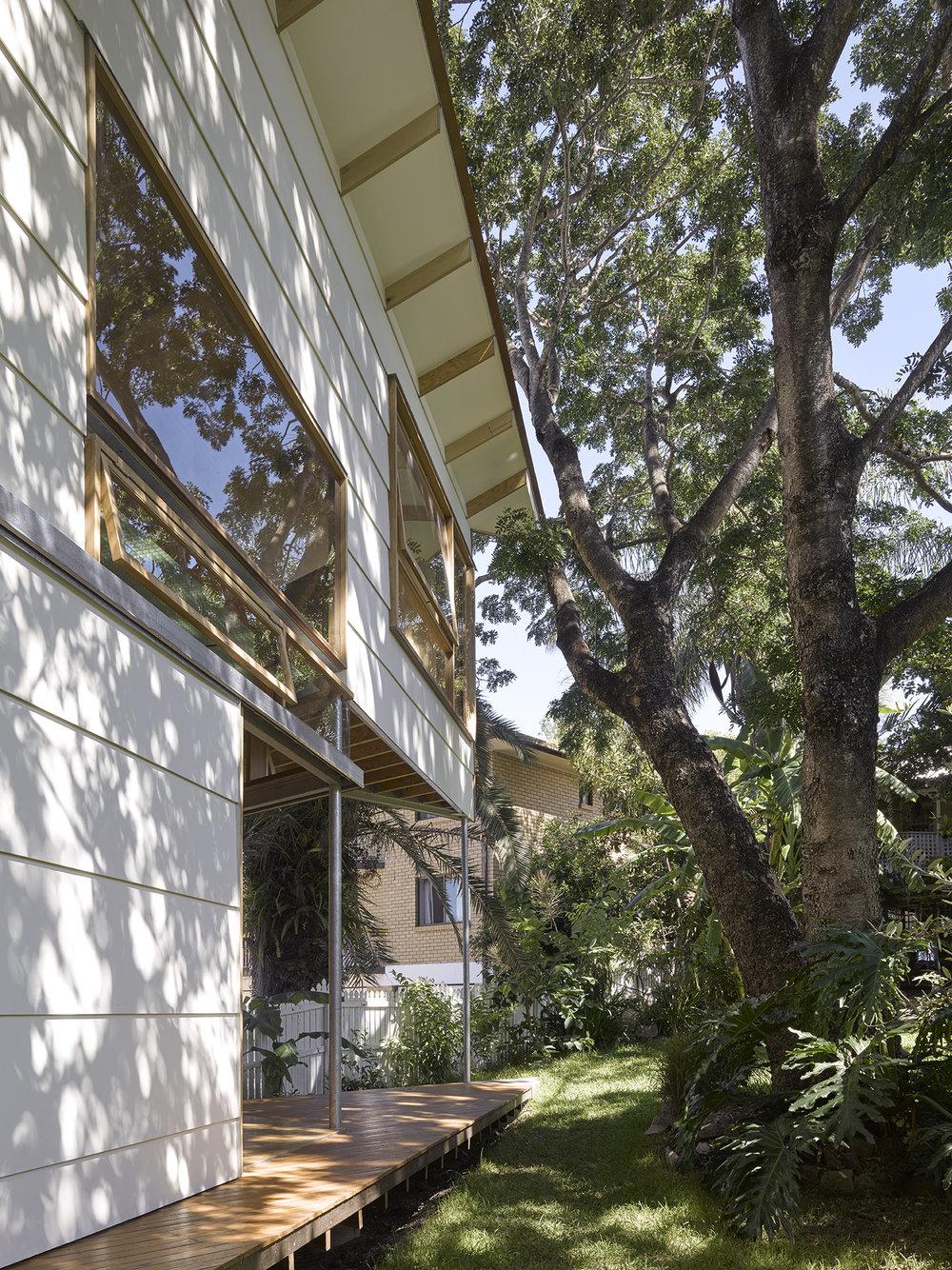 -®CFJ_Taringa Treehouse-29.jpg