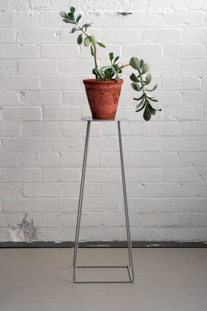 Basic_Plate_Grey_Plant.jpg