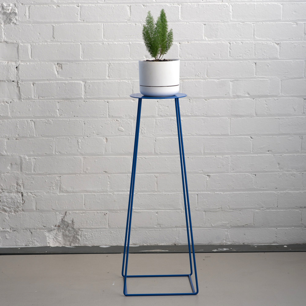 Basic_Plate_Blue_Plant.jpg