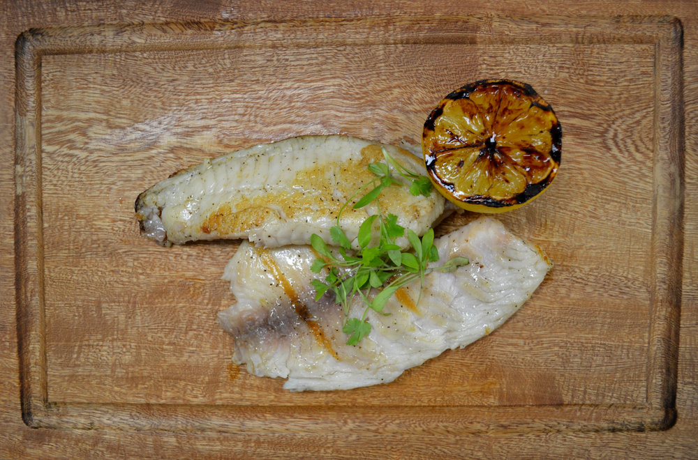 Grilled Tilapia Filets